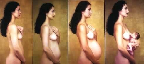 linea de tiempo de los pechos en el embarazo