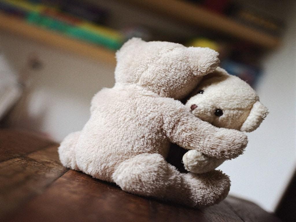 dia del abrazo