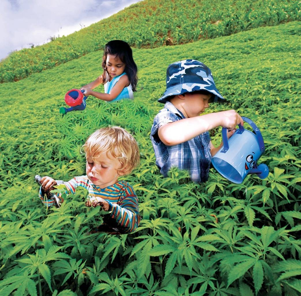 mis hijos fuman marihuana, niños con marihuana