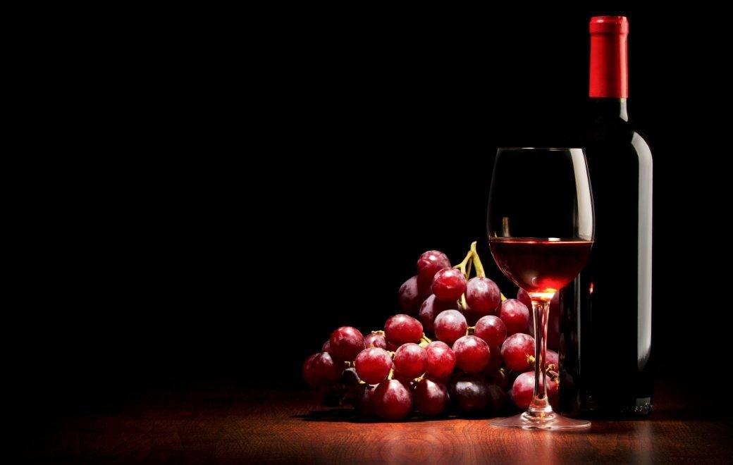 club de amantes de vino